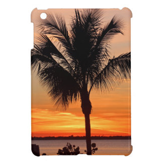 Living in Color iPad Mini Covers