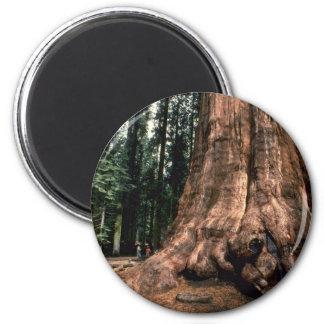 Living Mountain Magnet