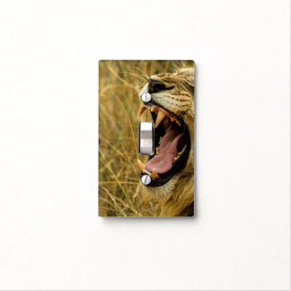Living on the edge - Roaring Lion Light Switch Cover