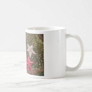 Living starfish (4).JPG Coffee Mug