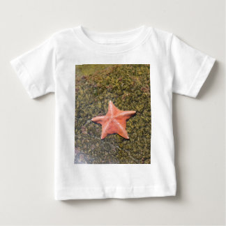 Living starfish.JPG Baby T-Shirt