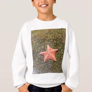 Living starfish.JPG Sweatshirt