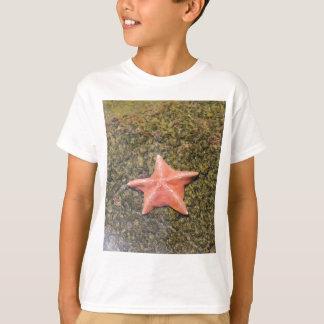 Living starfish.JPG T-Shirt