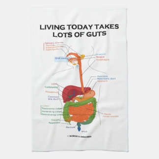Living Today Takes Lots Of Guts Digestive System Kitchen Towel