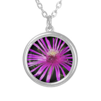 Livingston Daisy Silver Plated Necklace