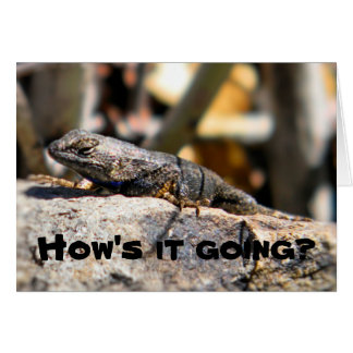 """Lizard asking """"how's it going"""" card"""