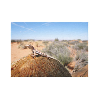 Lizard at Park in Utah Canvas Print