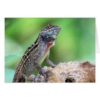 Lizard (Brown Anole) (6891) - Blank Inside Card