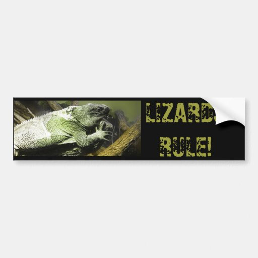 Lizard King Photography Bumper Sticker