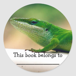 Lizard Lover Anole Book Sticker