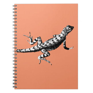 Lizard Notebooks