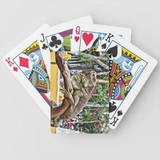 Lizard on a branch bicycle playing cards