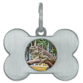 Lizard on a branch pet ID tag