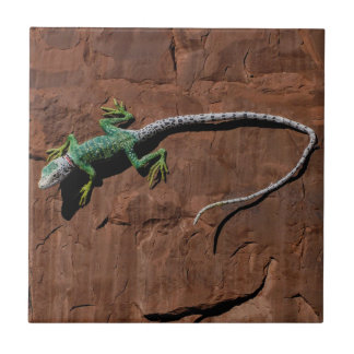 Lizard on a wall tile
