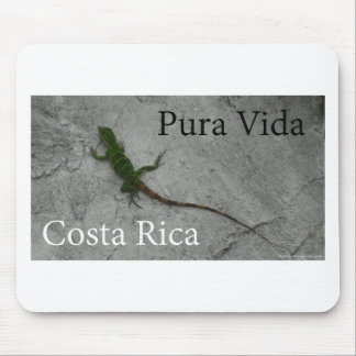 Lizard on Stone wall in Costa Rica Pura Vida! Mouse Pad