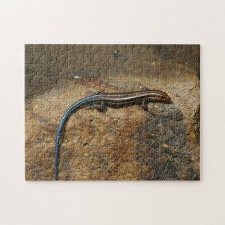 Lizard, Photo Puzzle. Jigsaw Puzzle