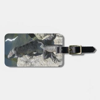 Lizard Rock Luggage Tag