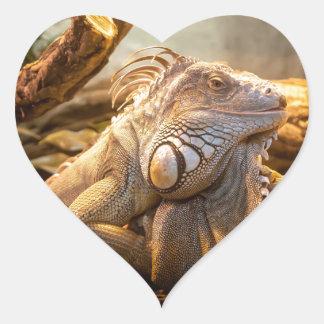 Lizard Up Close Heart Sticker