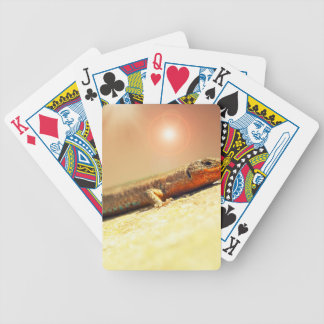 Lizart heat bicycle playing cards