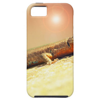 Lizart heat case for the iPhone 5