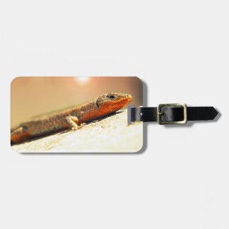 Lizart heat luggage tag