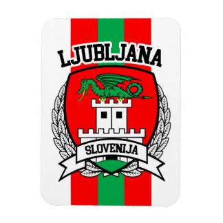 Ljubljana Magnet