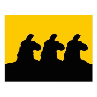 Llama: 3 siloutted Llama in black Postcard