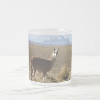 Llama at Snow Mountain - Illimani, Bolivia Frosted Glass Coffee Mug