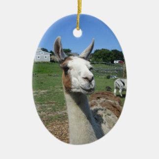 Llama Ceramic Oval Ornament
