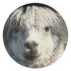Llama Face Plate