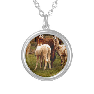 Llama family silver plated necklace