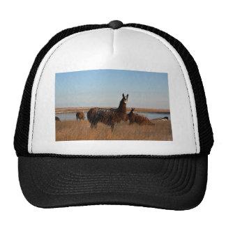 Llama Guardian Trucker Hat
