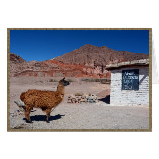 Llama in the Quebrada de Cafayate, Argentina Card