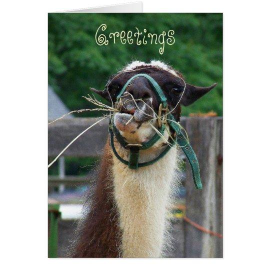 Llama Llunch, Greetings Card