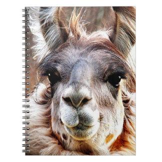 Llama Spiral Note Books