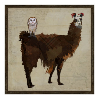 LLAMA & OWL Poster