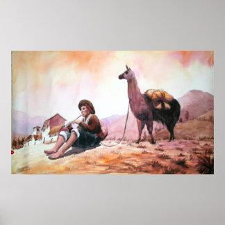 Llama Picture Cuzco Peru Poster
