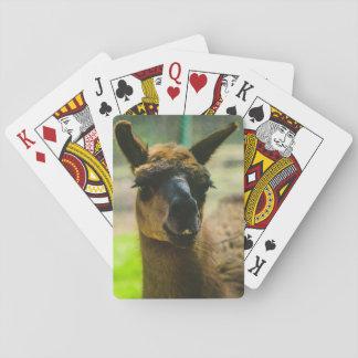 Llama Playing Cards
