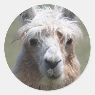 Llama Round Sticker