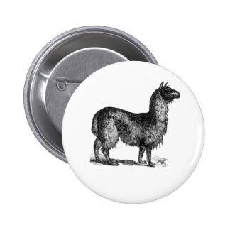 Llama Sketch Design Pinback Buttons