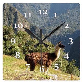 Llama Square Wall Clock