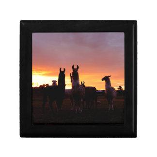 Llama Sunrise Gift Box