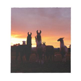 Llama Sunrise Notepad
