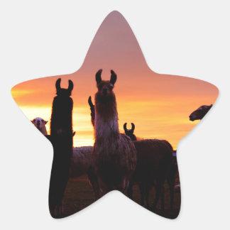 Llama Sunrise Star Sticker
