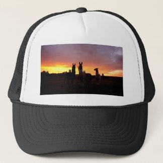 Llama Sunrise Trucker Hat
