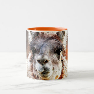 Llama Two-Tone Coffee Mug