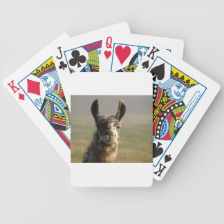 Llama Watch Bicycle Playing Cards