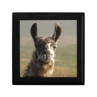 Llama Watch Gift Box