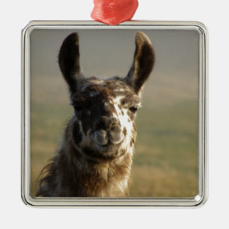 Llama Watch Silver-Colored Square Ornament