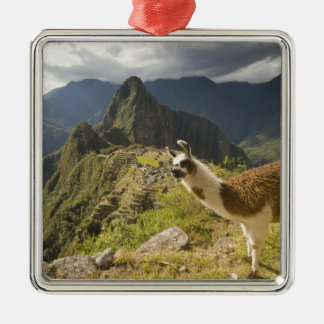LLamas and an over look of Machu Picchu, Metal Ornament